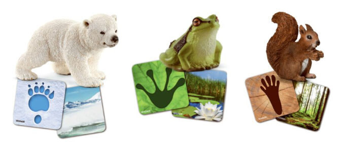 Schleich wild life flash cards